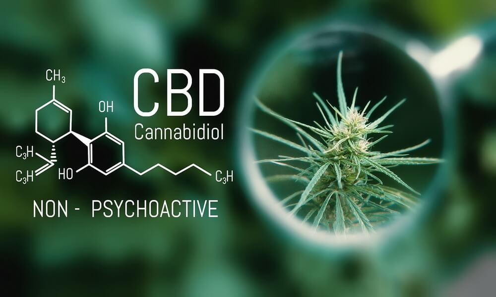 How-to-use-cbd-oil-for-cancer-3