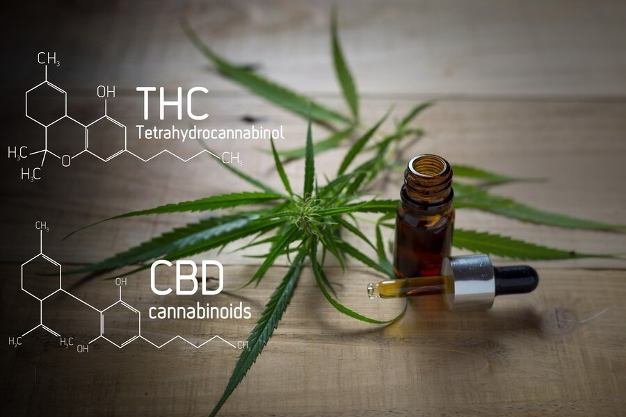 does-cbd-oil-have-thc-(3)