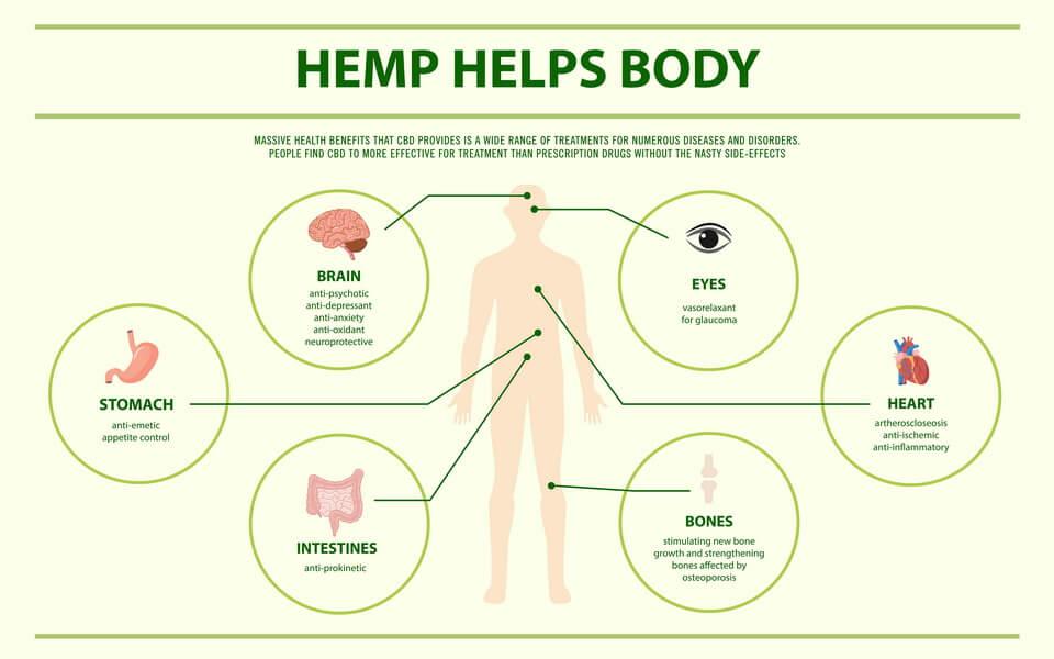 does-hemp-oil-have-cbd-2
