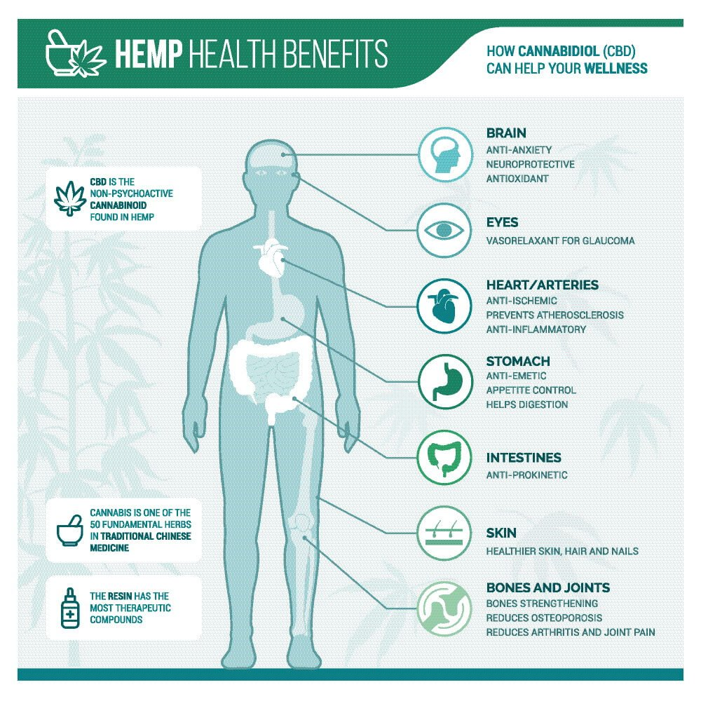 what-is-the-difference-between-hemp-oil-and-cbd-oil-3