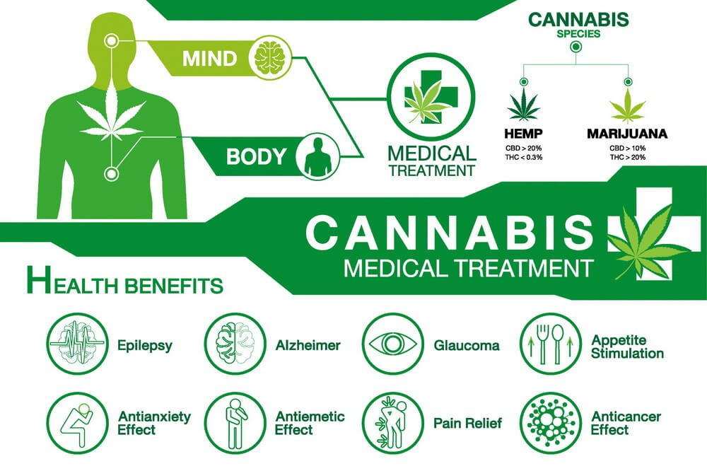 what-is-the-difference-between-hemp-oil-and-cbd-oil-5